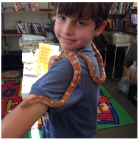 Charlie with corn snake