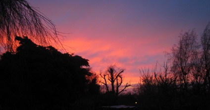 Winter Tales Sunset
